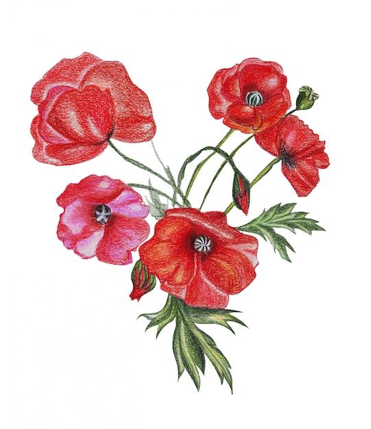Illustration De Fleurs De Bouquet De Dessin Au Crayon Aux