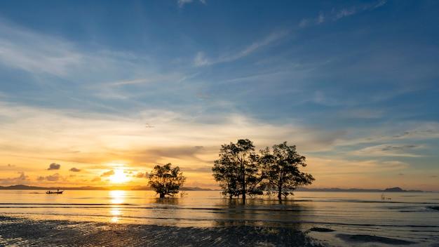 Image de longue exposition de ciel dramatique au coucher du soleil ou au lever du soleil et de nuages sur la montagne avec des arbres en mer Photo Premium