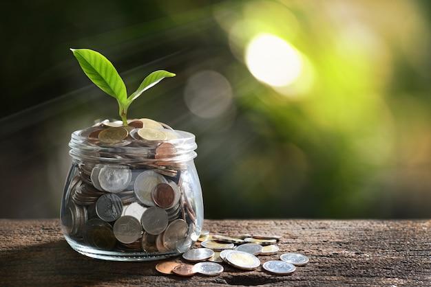 Image de tas de pièces de monnaie avec la plante sur le dessus dans un bocal en verre pour les entreprises Photo Premium