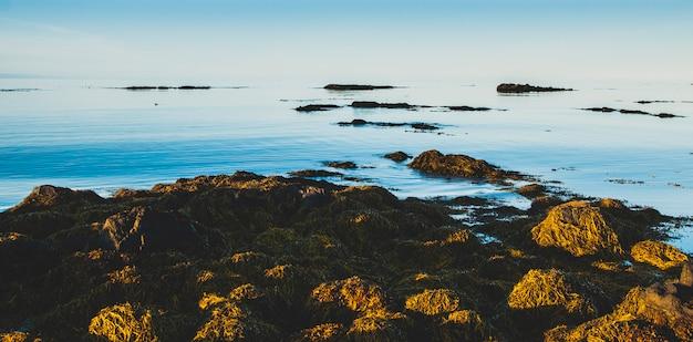 Images apaisantes de paysages marins calmes pour ceux qui recherchent des vacances reposantes. Photo Premium