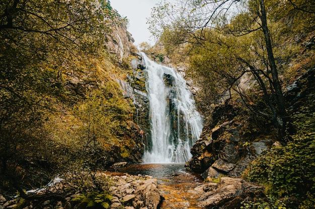 Incroyable Cascade Massive Au Milieu De La Forêt Photo Premium