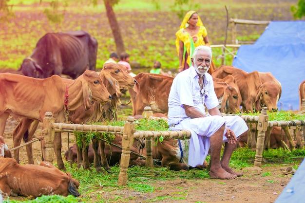 Inde rurale, fermier indien Photo Premium