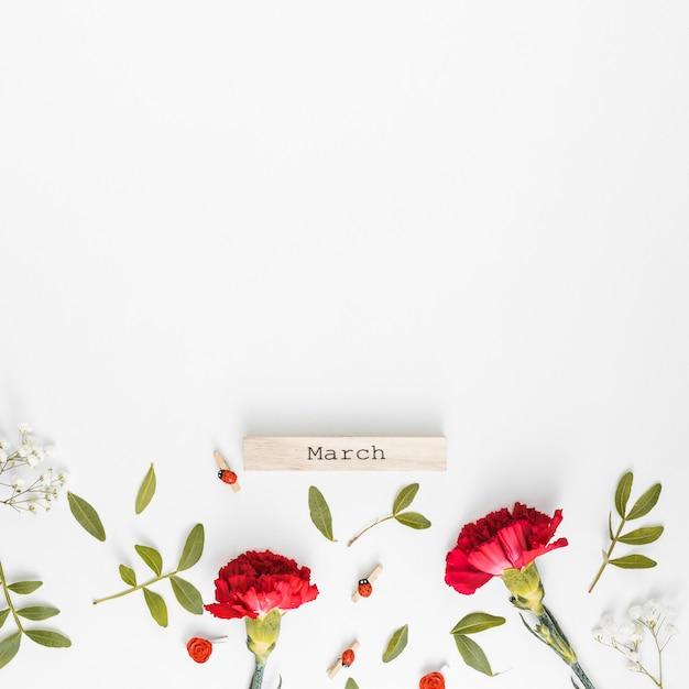Inscription de mars avec des fleurs d'oeillets Photo gratuit