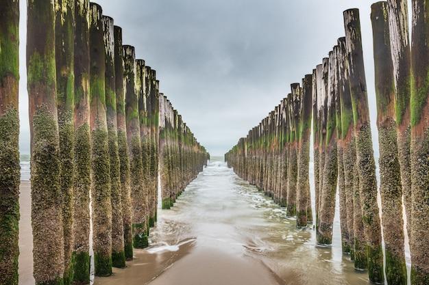Installations De Brise-vagues En Bois En Mer Du Nord, Zélande, Pays-bas Photo gratuit