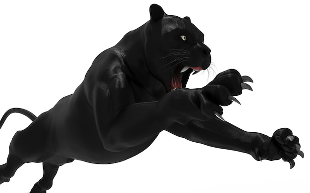 Isolat de panthère noire sur fond blanc, tigre noir Photo Premium