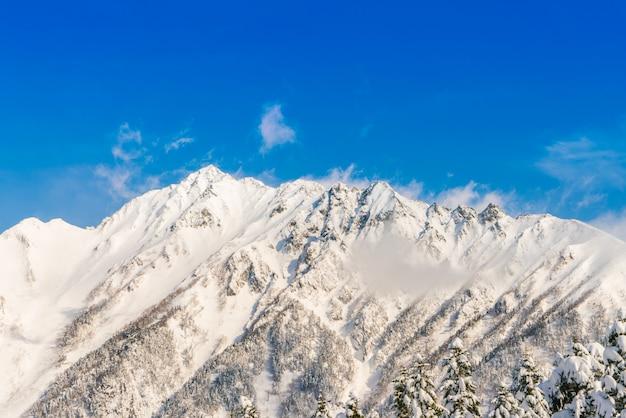 Japon hiver montagne avec la neige a couvert Photo gratuit