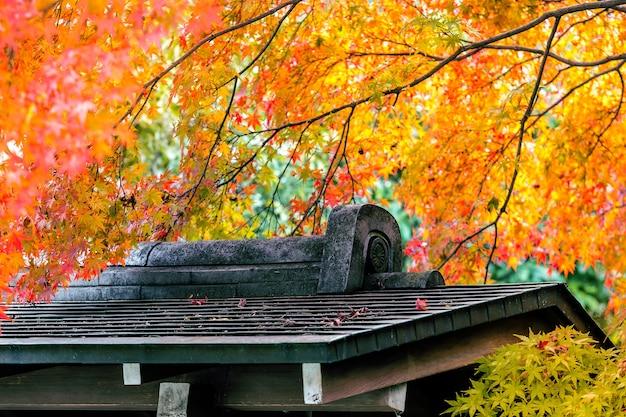 Japon Saison D'automne Avec Toit D'architecture Dans Le Parc, Japon. Photo gratuit