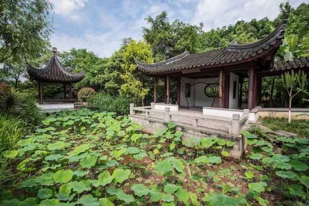 Jardin Chinois N Zurich   Photo Gratuite