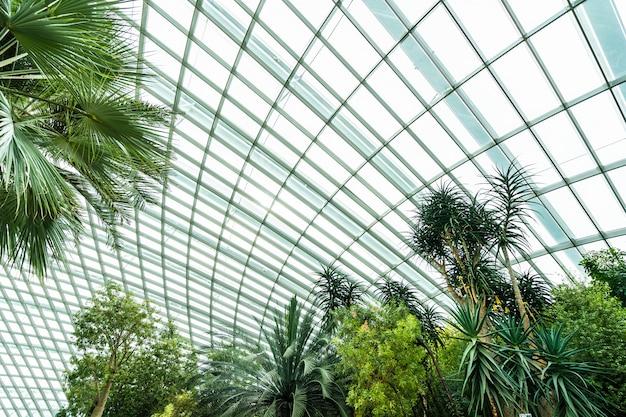 Jardin fleuri et forêt de serre pour les voyages Photo gratuit