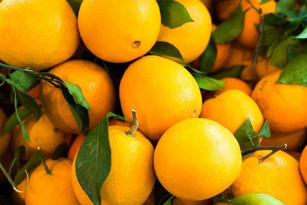 Jardin d'orange Photo Premium