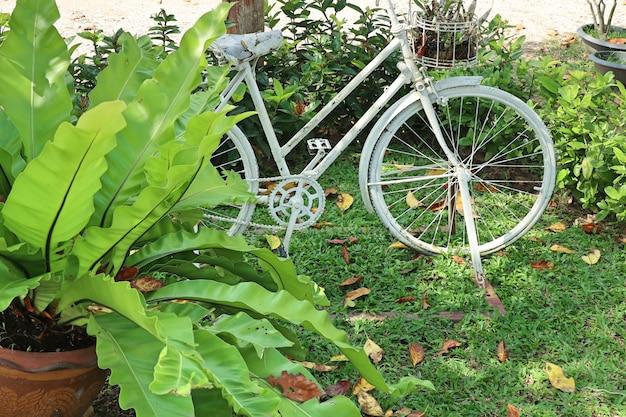 Jardin vintage de décoration de vélos   Télécharger des Photos Premium