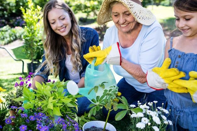 Jardinage familial multigénération dans le parc Photo Premium