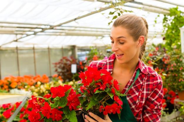 Jardinier dans son magasin de fleurs de serre Photo Premium