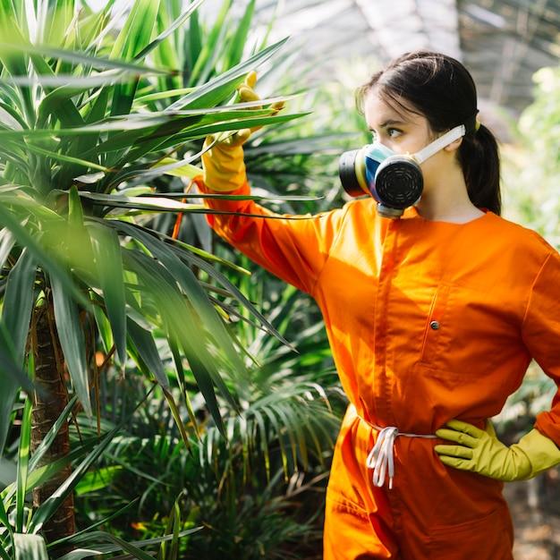 Jardinier femelle examinant une plante en serre Photo gratuit