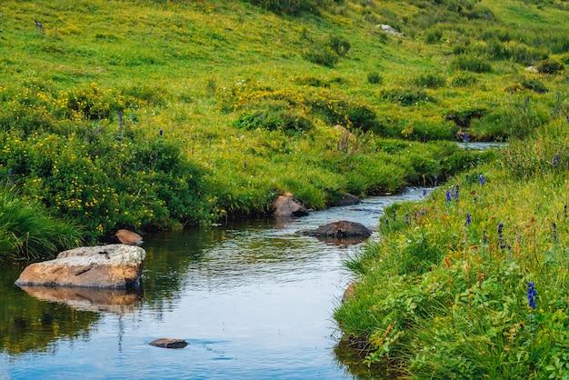 Jet d'eau de printemps dans une vallée verdoyante en journée ensoleillée. Photo Premium
