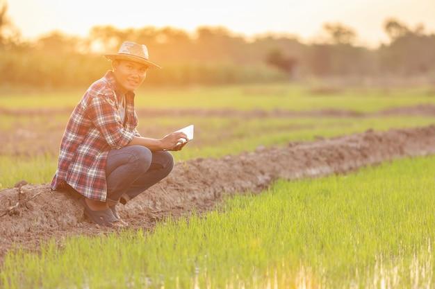 Jeune agriculteur asiatique avec tablette dans la rizière verte Photo Premium