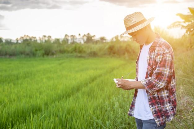 Jeune agriculteur asiatique vérifiant son champ de riz vert et faire un rapport sur le cahier Photo Premium