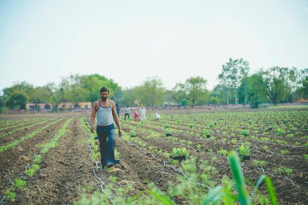 Jeune Agriculteur Indien Au Champ De Bananes Photo Premium