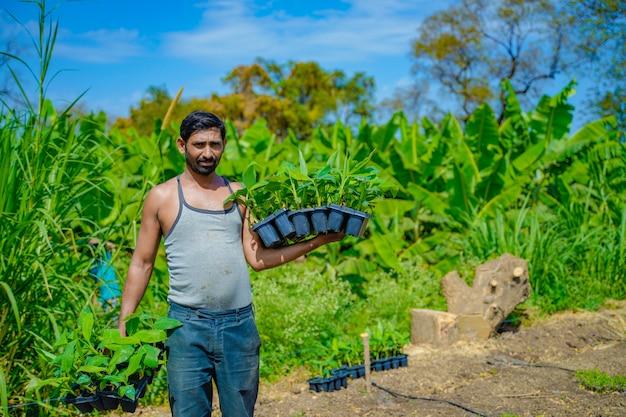 Jeune Agriculteur Indien Au Champ De Culture De Tissus De Banane Photo Premium