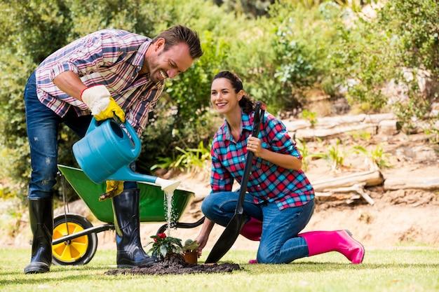 Jeune couple, plantation, pelouse Photo Premium