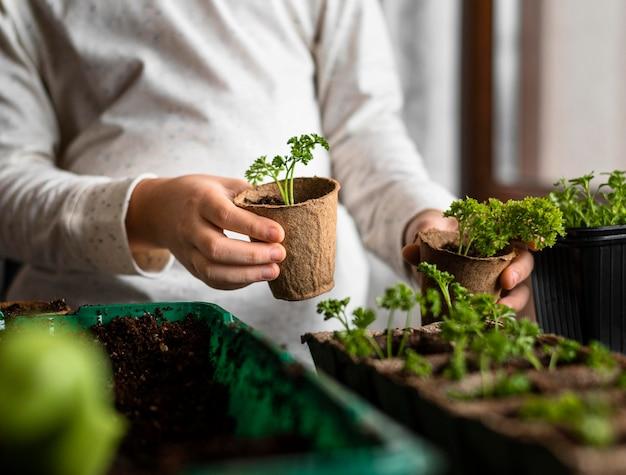 Jeune Enfant Avec De Petites Plantes Près De La Fenêtre Photo gratuit