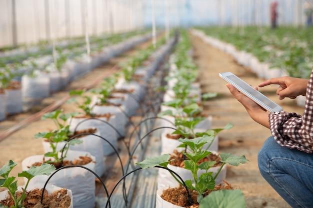 Jeune femme contrôlant une plantation Photo gratuit