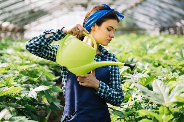 Jeune femme jardinier prenant soin des plantes en serre Photo gratuit