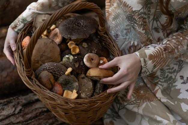 Jeune femme en robe de lin ramassant des champignons dans la forêt Photo gratuit