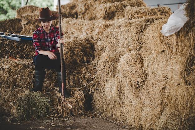 Jeune femme travaillant avec du foin pour les vaches à la ferme laitière Photo gratuit