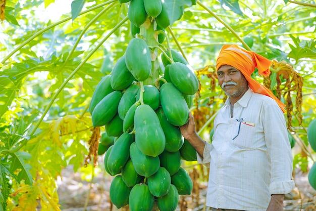 Jeune paysan indien au champ de papaye Photo Premium