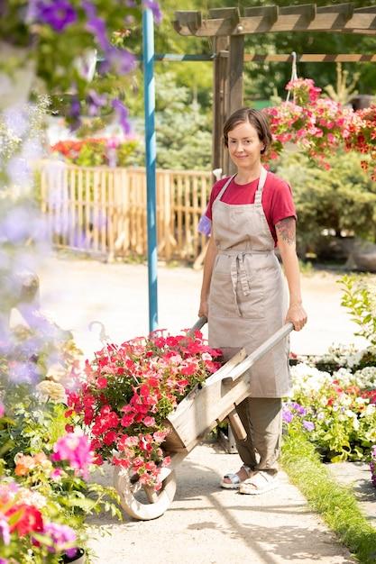 Jeune Travailleur De Centre De Jardinage Avec Panier Debout Sur L'allée Entre Les Plates-bandes Tout En Travaillant En Serre Photo Premium
