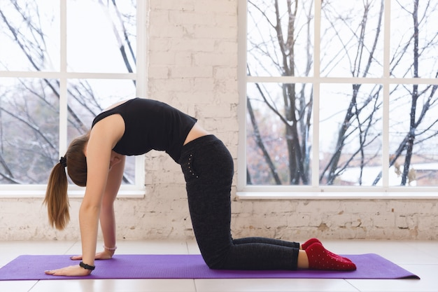 Jolie fille sur le tapis de yoga warm-up avec plié en posture de chat Photo Premium