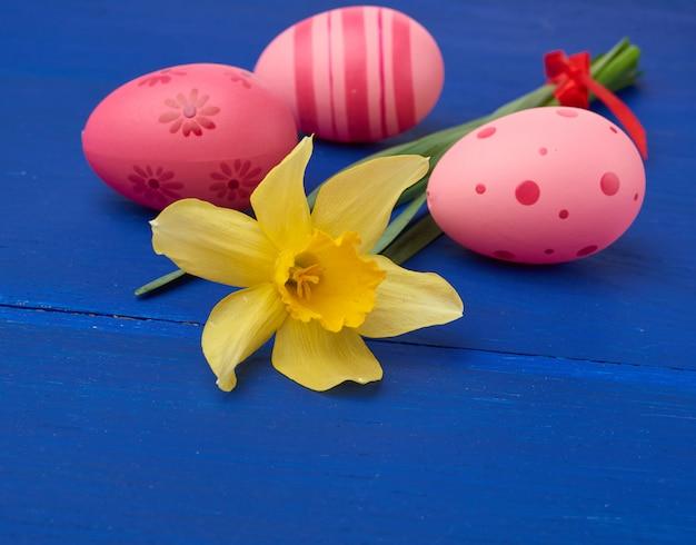 Jonquille En Fleurs Jaunes Et Oeufs De Pâques Rose Sur Fond De Bois Bleu Photo Premium