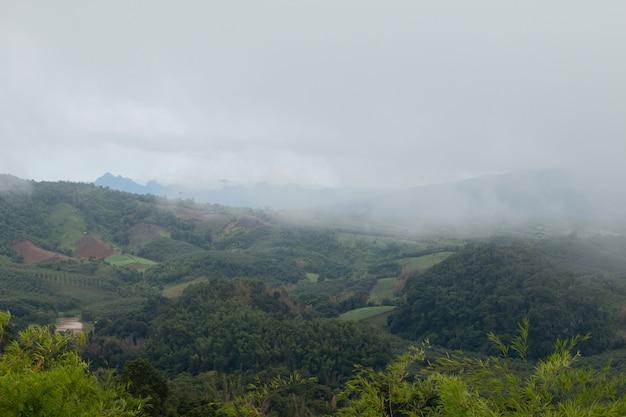 Jour Sombre Et Brumeux Avec Brouillard Sur Les Montagnes Photo Premium
