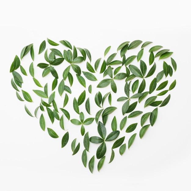 Jour de la terre. motif floral de feuilles vertes comme coeur sur blanc. Photo Premium