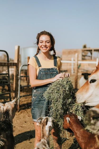 Joyeuse jeune fille nourrir les chèvres et une vache Photo Premium