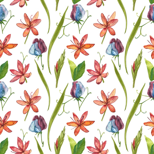 Kafir lilies fleurs illustration aquarelle. modèles sans soudure. Photo Premium