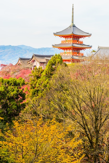 Kiyomizu dera temple à kyoto au japon Photo gratuit