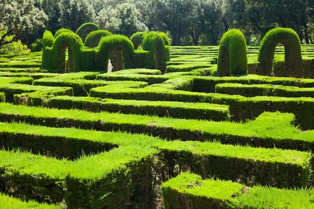 Labyrinthe au labyrinth park de barcelone Photo gratuit