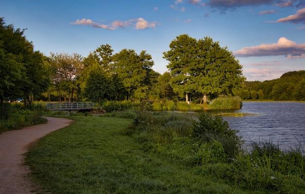 Lac avec des arbres au coucher du soleil Photo Premium