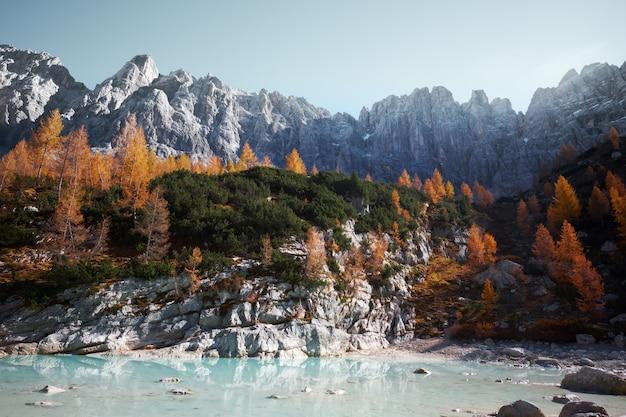 Lac Au Pied D'une Belle Montagne Couverte D'arbres Photo gratuit