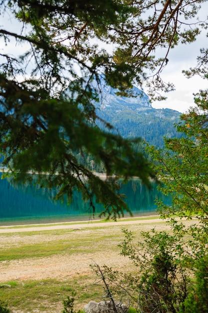 Lac dans le parc forestier de durmitor. monténégro. Photo Premium