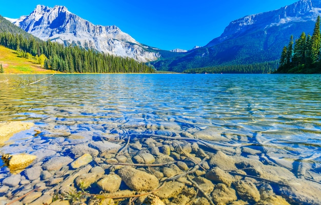 Lac émeraude, parc national yoho, canada Photo Premium
