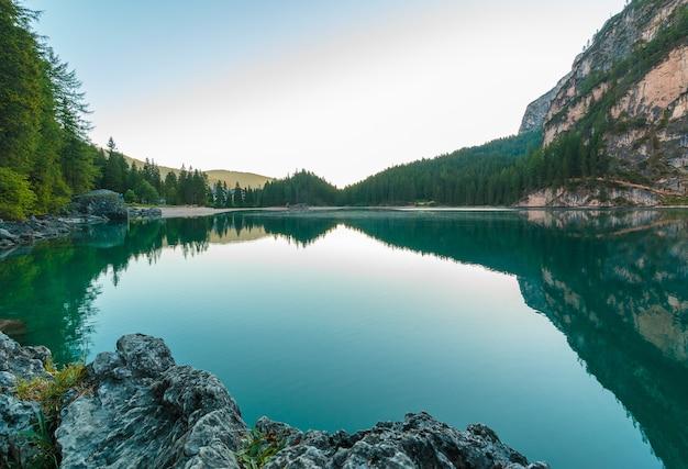 Lac Entouré D'arbres Photo gratuit
