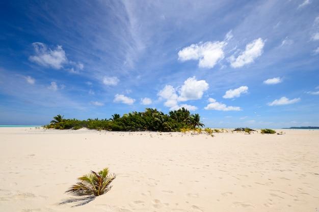 Lagon d'aitutaki et rarotonga, atolls reculés de l'océan pacifique, îles cook Photo Premium