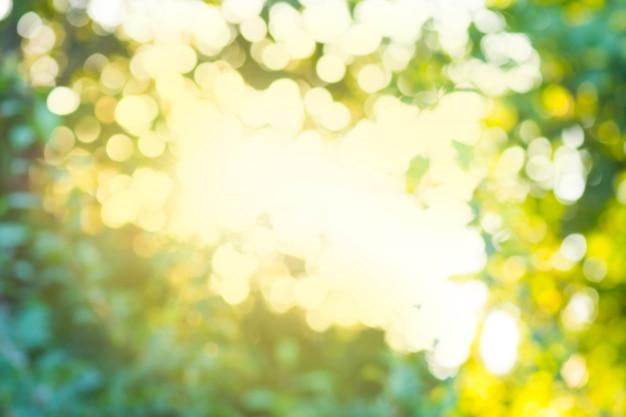 Laisse le bokeh pour le fond de la nature. bokeh naturel flou. Photo Premium