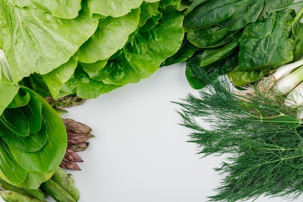 Laitue Aux épinards, Asperges, Oseille, Oignons Verts Et Gousses, Aneth Vue Grand Angle Sur Un Mur Blanc Photo gratuit