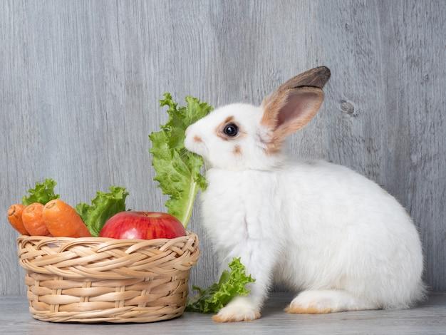 Lapin blanc mignon, manger des carottes de laitue et de pomme dans le panier en bois. Photo Premium