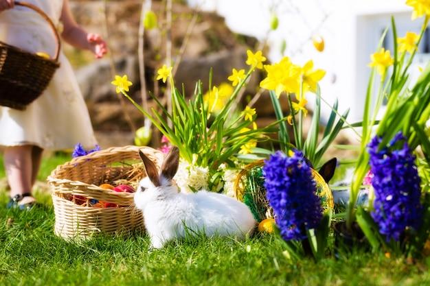 Lapins de pâques sur prairie avec panier et œufs Photo Premium