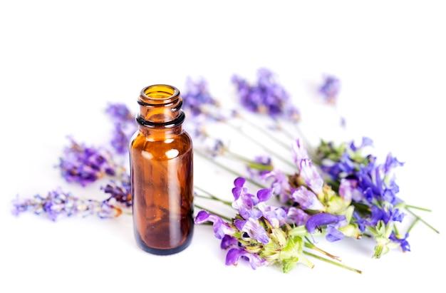 Lavande et huiles essentielles Photo Premium